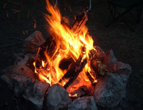 Prescott National Forest Enters Stage II Fire Restrictions on Friday, June 11 at 8:00 A.M.
