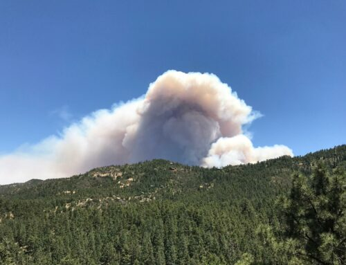 Stage 1 Fire Restrictions to be Implemented on Friday, May 14