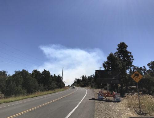 Pile Burning Planned March 2 – 6 Along Walker Road