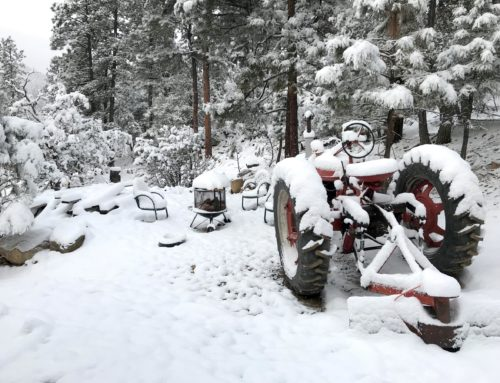 Snow on Feb 27 – 6 inches