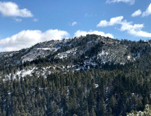 More Snow In Walker