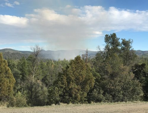 Prescott National Forest – 16 Acre Lynx Fire 80% Contained at  9:00am