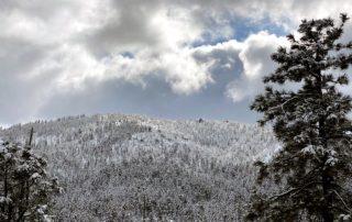 Christmas Snow In Walker